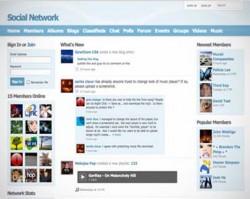 Social engine scripti demo